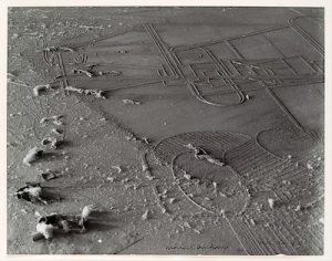 Man Ray, Dust Breeding, 1920, printed c. 1967, gelatin silver print, 23.9 x 30.4 cm (The Metropolitan Museum of Art)