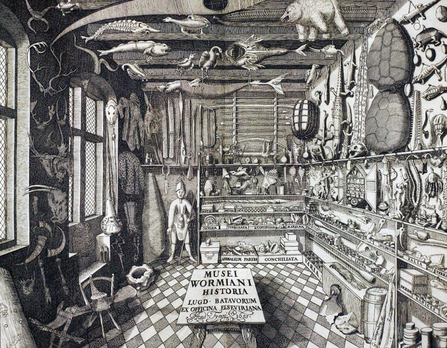 Frontispiece depicting Ole Worm's cabinet of curiosities, from Museum Wormianum, 1655 (Smithsonian Libraries). Ole Worm was a Danish physician and natural historian whose engravings of his collection was published in this volume after his death.