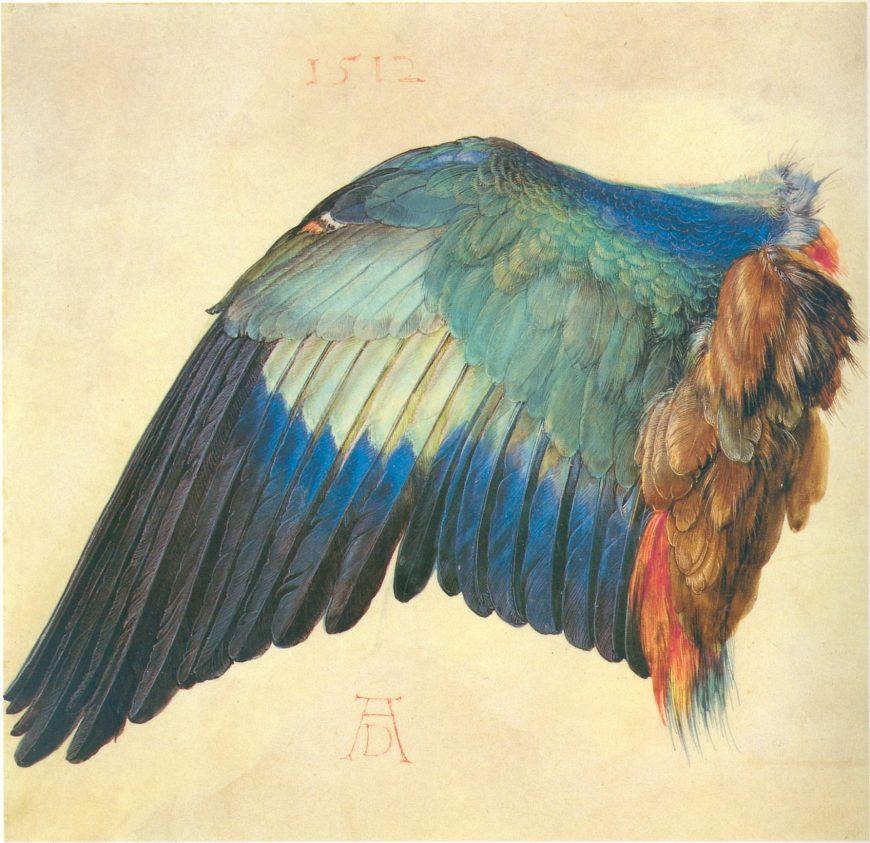 Albrecht Dürer, German, 1471-1528, Wing of a Blue Roller, 1512, watercolor, Albertina, Vienna.