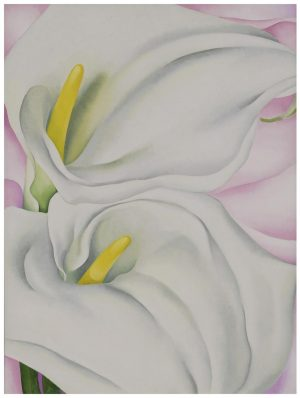Georgia O'Keeffe, Two Calla Lilies on Pink, 1928 (Philadelphia Museum of Art)