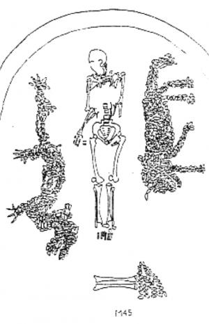 """Representations of dragon and tiger, mosaic of river clam shells, c. 5300 B.C.E., royal grave no. 45, Xishuipo, Henan province. Diagram first published in Feng Shi, """"Henan Puyang Xishuipo 45 Hao Mu de Tianwenxue Yanjiu"""", Wenwu 3:52-69."""