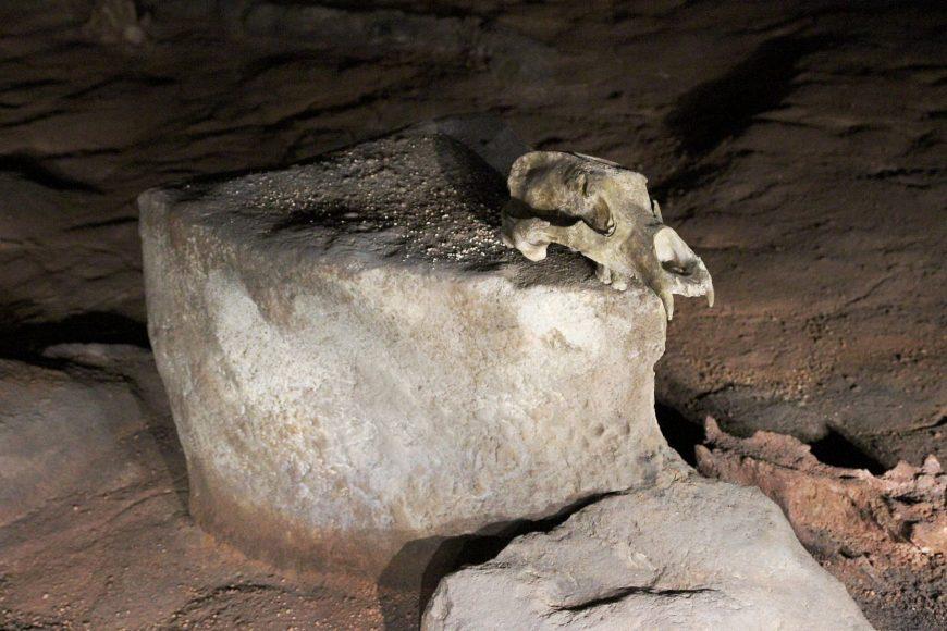 Chauvet Cave (Pont d'Arc (from the cave replica), France, c. 30,000 - 28.,000 B.C.E. or c. 15,000 - 13,000 B.C.E. (photo: Claude Valette, CC BY-SA 4.0)