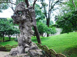 Scholar's rock in the Garden of the Humble Administrator, Suzhou, China (image: Steven Zucker, CC BY-SA)